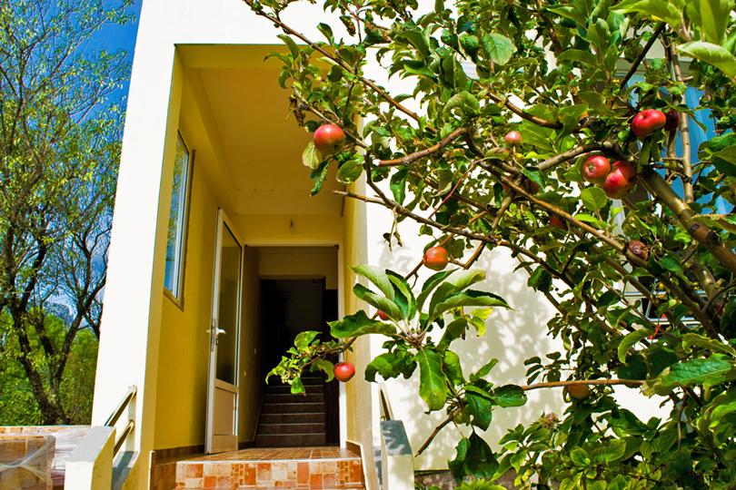 Apartments SD-09, Starigrad Paklenica. ©Infinity Travel Paklenica