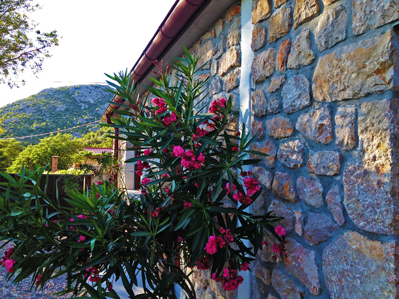 Apartments SD-05 FH, Starigrad Paklenica. ©Infinity Travel Paklenica