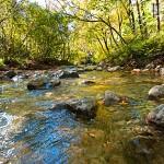 Stream in National park Paklenica