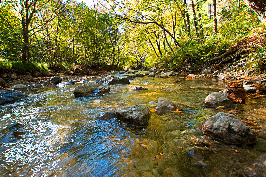 Stream in National park Paklenica